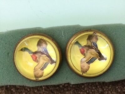 Horse bridle rosette / button---Mallard duck