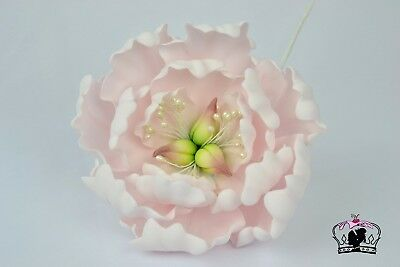 "Large, 5 "", sugar paste peony flower, handmade, wedding,edible, birthday"