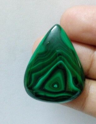 39.15Cts Marvelous 100% Natural Finest Malachite Pear Cabochon Gemstone 1096