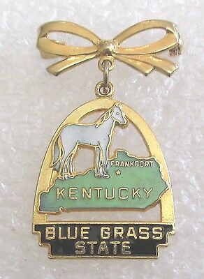 Vintage Kentucky Blue Grass State Tourist Travel Souvenir Collector Pin