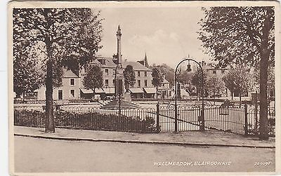 Wellmeadow, BLAIRGOWRIE, Perthshire