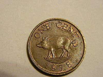 1978 Bermuda 1 Cent w/ Pig -----Lot #2,413