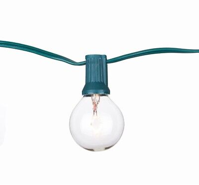 Clear Bulb String Light 25 ft Indoor Outdoor Backyard Holiday Party Decoration