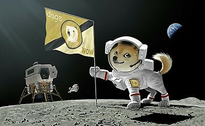 1,000 DOGECOIN  Crypto Currency