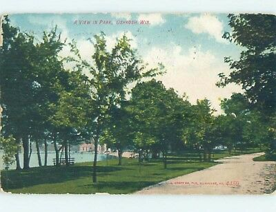Divided-Back PARK SCENE Oshkosh Wisconsin WI hk8188