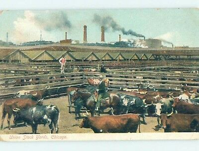Unused Divided-Back POSTCARD FROM Chicago Illinois IL HM5693
