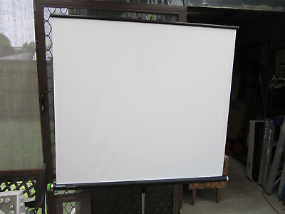 Hanimex Projector Screen