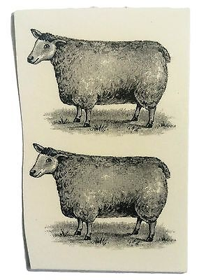 2 Black & White Sheep  Waterslide Decals -  Ideal For Crafts and Ceramics