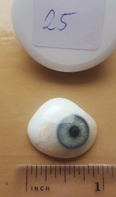 HALLOWEEN Vintage antique HUMAN GLASS EYE Prosthetic Real OLD and scary #25
