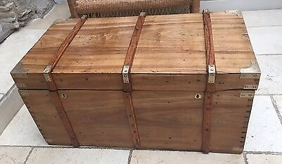 Stunning Antique Military Style Camphor Chest