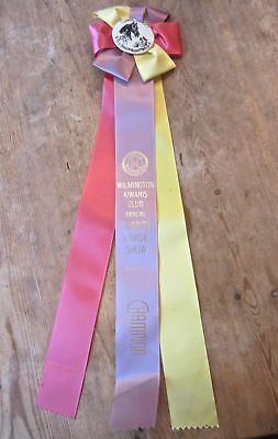 Vintage Wilmington Kiwanis Club Annual Charity Horse Show Champion Ribbon