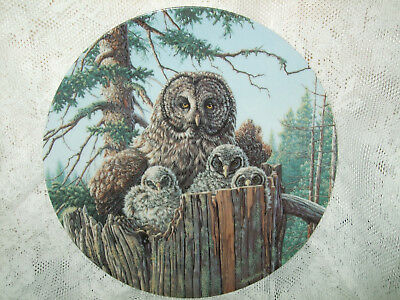 "Edwin Knowles: Forest's Edge: Great Gray Owls"" Collector's Plate No Coa"