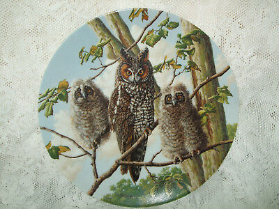 Treetop Trio: Long Eared Owls Under Mother's Wings Knowles Owl Plate Collection