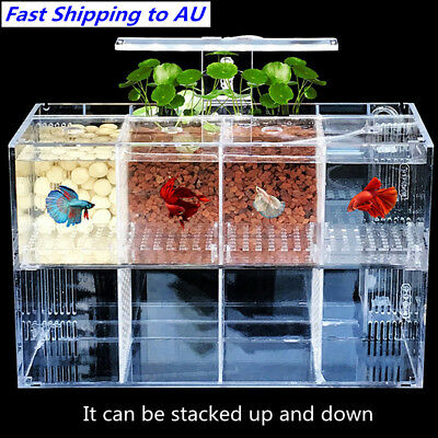 Large Acrylic Clear Fish Tank LED Light Betta Desktop Aquarium Water Pump Filter