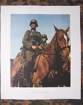 ORIGINAL 1943 Color Poster Wehrmacht Cavalry soldiers on horses German TOP