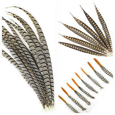 LADY AMHERST PHEASANT Feathers 4-40 Inches ALL TYPES Craft/Bridal/Halloween/Hats
