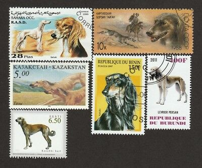 SALUKI** International Dog Postage Stamp Collection ** Unique Gift*