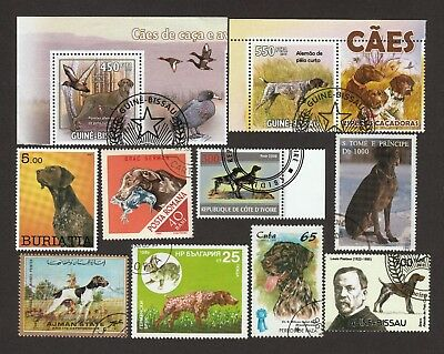 GERMAN SHORTHAIRED POINTER ** Int'l Dog Postage Stamp Collection ** Unique Gift*