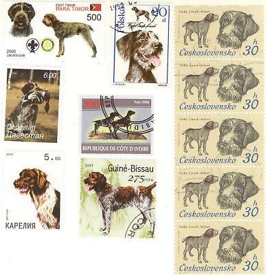 GERMAN WIREHAIRED POINTER ** Int'l Dog Postage Stamp Collection ** Unique Gift*