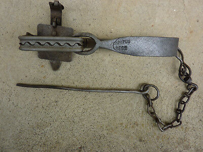 PLATYPUS REGD 2-line reinforced jaw rabbit trap. Complete, working condition.