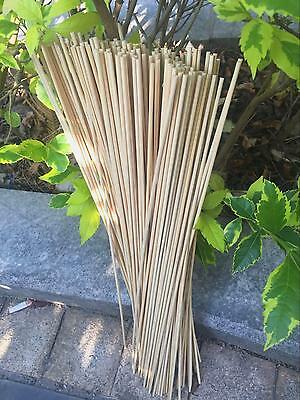 "Garden flower bamboo sticks 16""(40cm) supporting planting,200pcs"