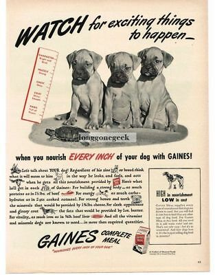 1947 GAINES Dog Food GREAT DANE Puppies Watching Turtle Vtg Print Ad