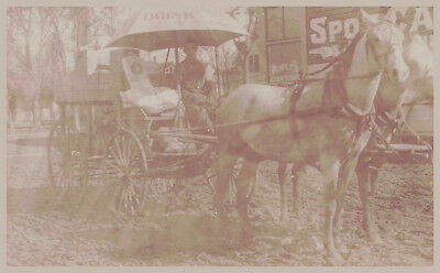 Early 1900s RPPC J.A. Reed Minnesota Peoples Cash Store  Wagon Postcard Grocery