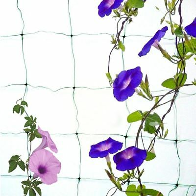 Use Gourd Trellis Green Nylon Fence Plant Support Climbing 1.8X3.6m Netting