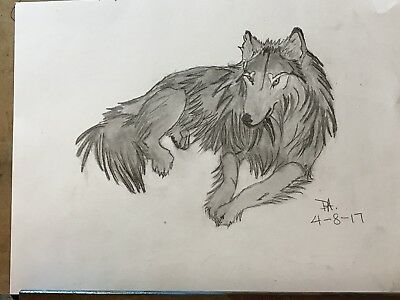 Animal sketches
