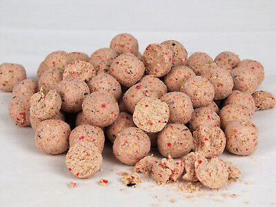 "Boilies 5 Kg IFS Baits ""Squiddy"" 15 mm"