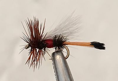 Royal Trude - Trout Fly Fishing Dry Flies - 6 Flies X Size 18