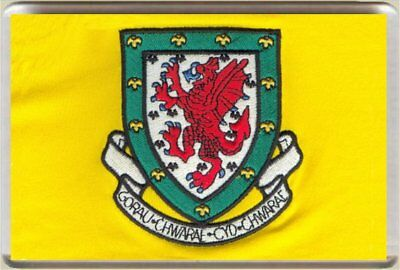 Fridge Magnet zb Football Wales Badge Daffodil Yellow 7 x 4.5cm Sport Bespoked