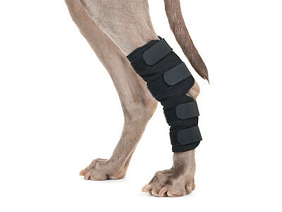 Black Back On Track Pain Relief Hock/ankle Wraps For Dogs