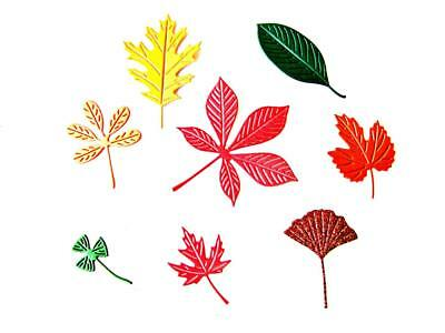 Autumn Plant Any Colour//Card Harvest 8 Beautiful Wheat Die Cuts Ch