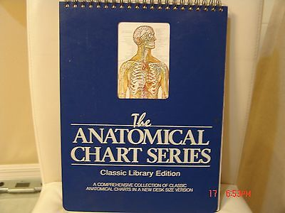 The Anatomical Chart Series Classic Library Edition Laminated Easel Desk Sized