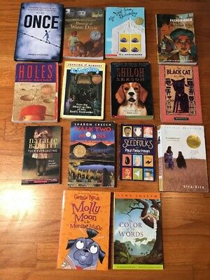 Lot of 14 Young Adult Middle School Fiction Chapter Books! Excellent Titles!!!