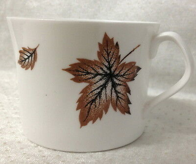 Orphan Cup Windswept By Queen Anne Bone China England Brown Tone Ivy Leaves