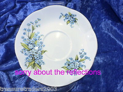🌟 Royal Bone China Thailand Saucer Blue Forget Me Not Flowers