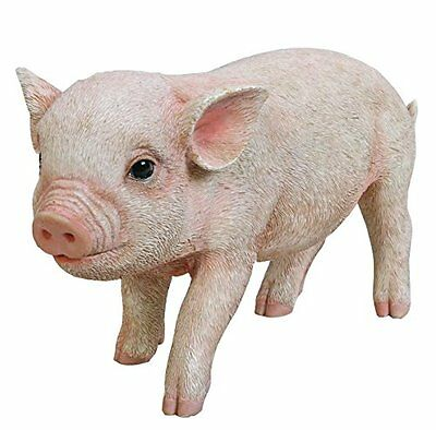Standing Baby Pig  - Life Like Figurine Statue Home / Garden NEW