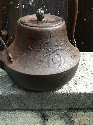 Antique Cast Iron Japanese Teapot Porcelain Interior RARE FORM