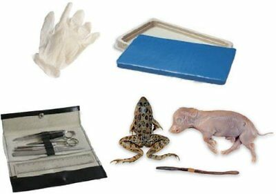 Student Dissection Kit Frog, Worm, Pig