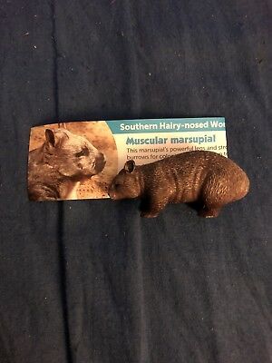 Yowie Toys Southern Hairy-nosed Wombat