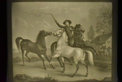 Antique PPM Porcelain Lithophane Panel Plaque #672 Horse & Rider View