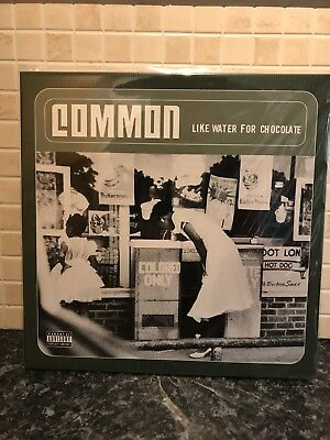 Common - Like Water For Chocolate LP
