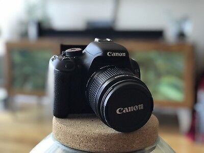 Canon T3i 18.0MP Digital SLR Camera Kit with 24-55 and 50mm Lens, 5 batteries