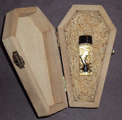 Real Female Black Widow Spider in a Wooden Coffin! Great Halloween Gift!