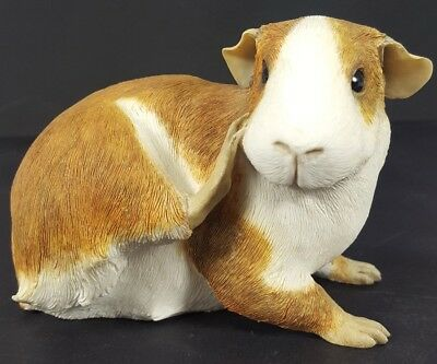 Sherratt Simpson Guinea Pig Scratching With Claw Hand Painted Figurine Statue