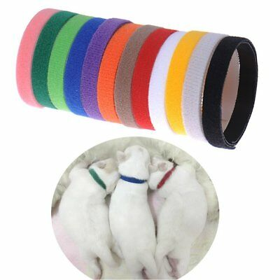 12 Colors Adjustable Newborn Puppy ID Collar Band Whelping Pet Kitten Reusable