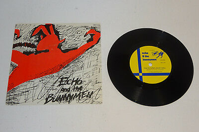 """Echo And The Bunnymen The Pictures On My Wall 1979 Zoo! Uk 7"""" Issue, P/s"""