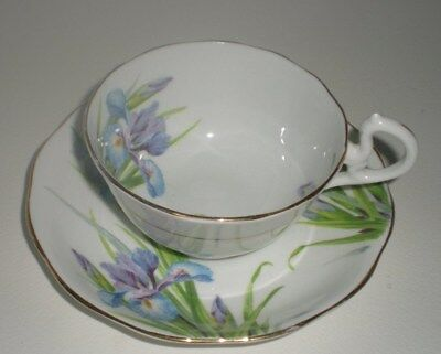 "Royal Albert Crown China ""iris"" Tea Cup & Saucer"